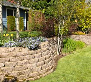 Retaining Walls & Cinder Blocks